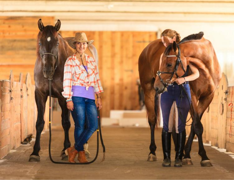 Nuit sur la paille et approche des chevaux