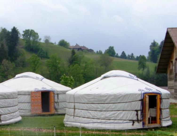 Passez une nuit dans une Yourte mongole !