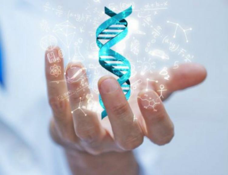 Analyse d'origine par ADN
