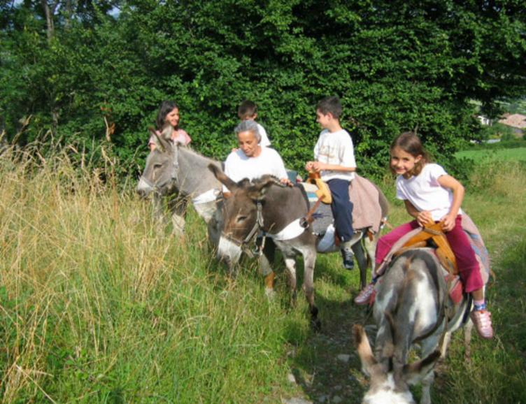 Randonnée avec un âne et fondue au feu de bois