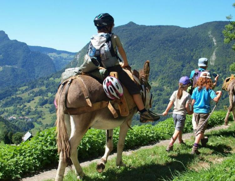 Randonnée avec un âne et kit fondue